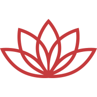Giant Lotus Flowers